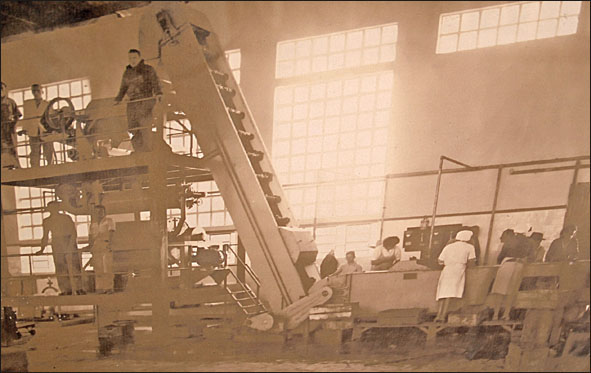 Funcionários das Indústrias CRAI em pleno trabalho. Foto cedida gentilmente pela família Barbizan. (Foto reprodução: Toninho Cury)
