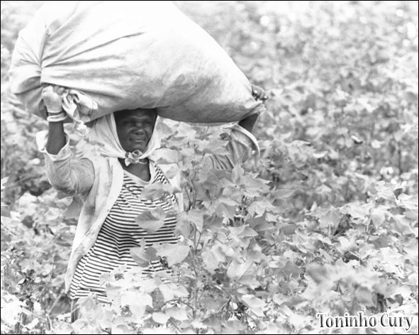 'Paisagem rural' (Foto: Toninho Cury)