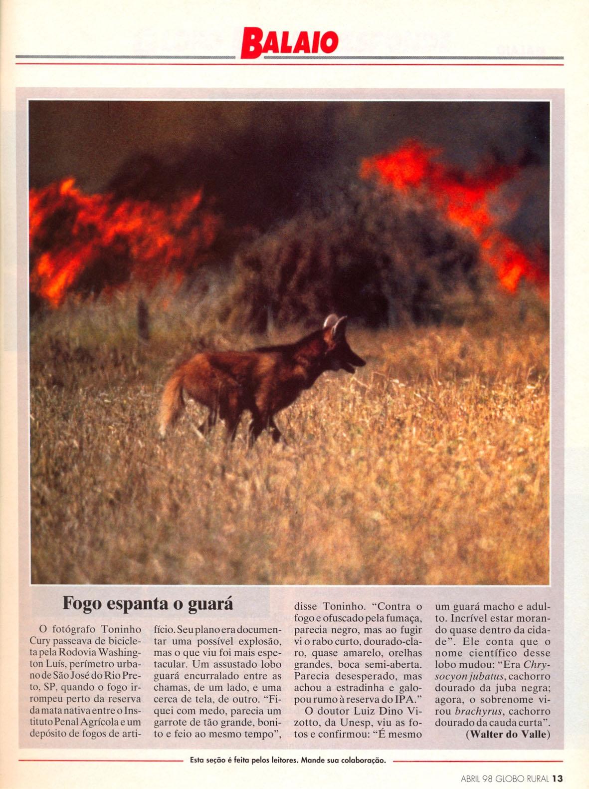 O flagrante de Toninho Cury foi publicado na revista Globo Rural. Abril de 1998.